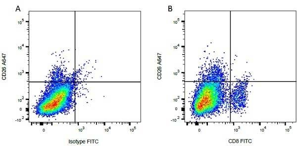 CD26 Antibody   CC69 gallery image 1