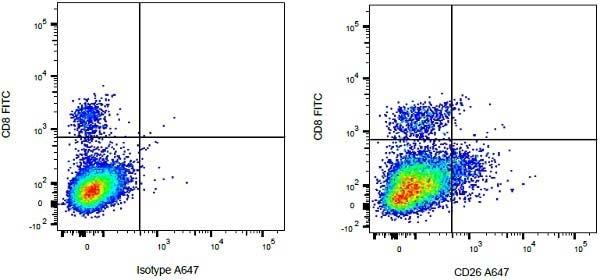 CD26 Antibody   CC69 gallery image 2
