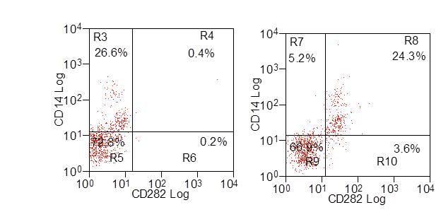 CD282 Antibody | AbD12538 gallery image 2