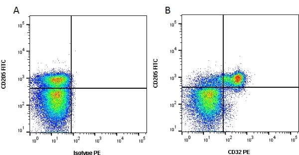 CD32 Antibody | CCG36 gallery image 1