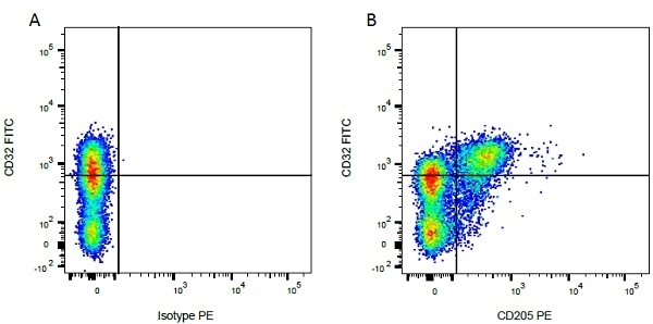 CD32 Antibody | CCG39 gallery image 4