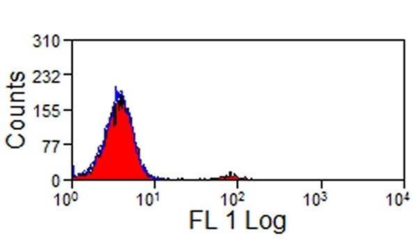 CD335 Antibody | AKS1 gallery image 1
