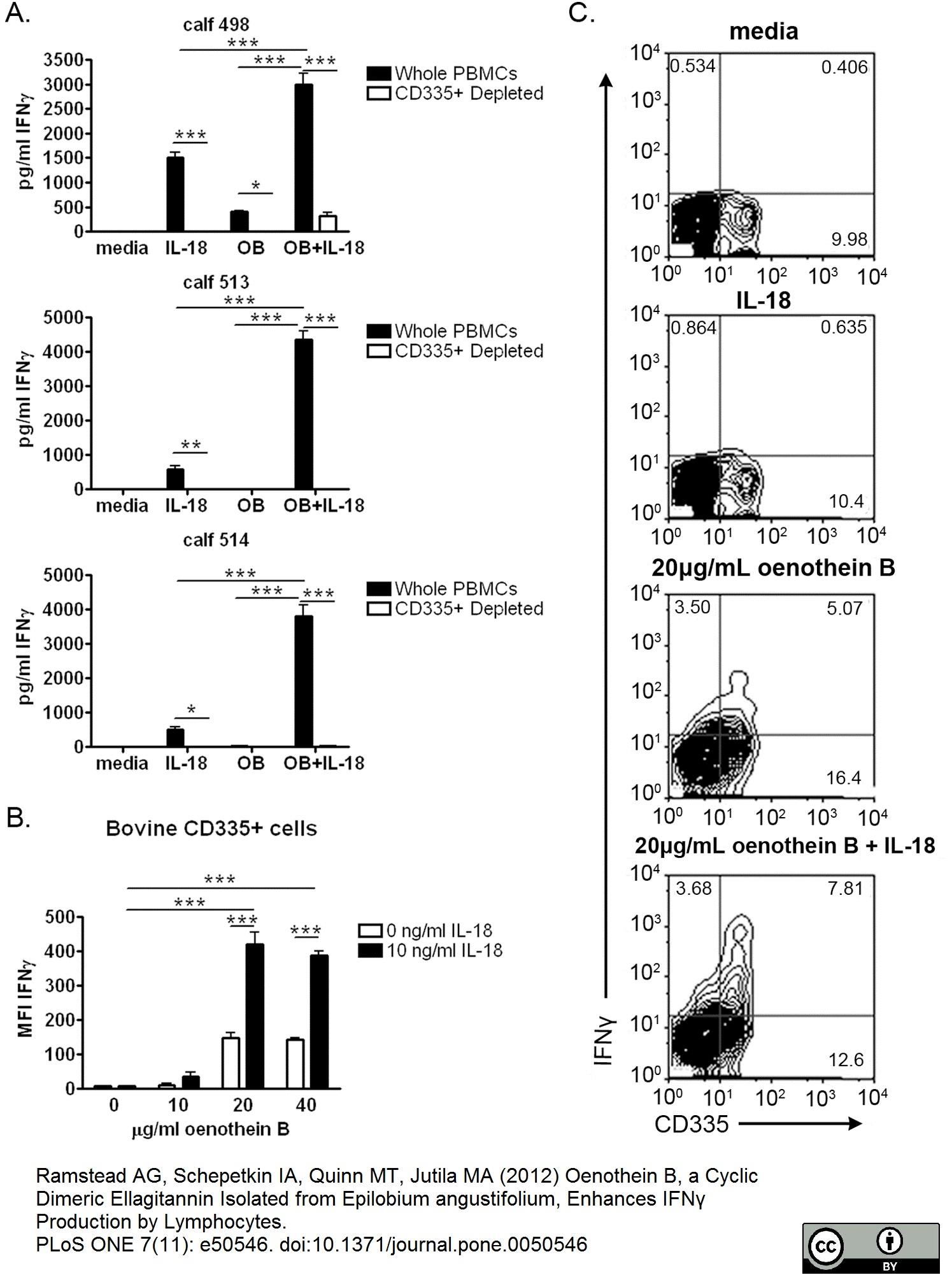 CD335 Antibody | AKS1 thumbnail image 4
