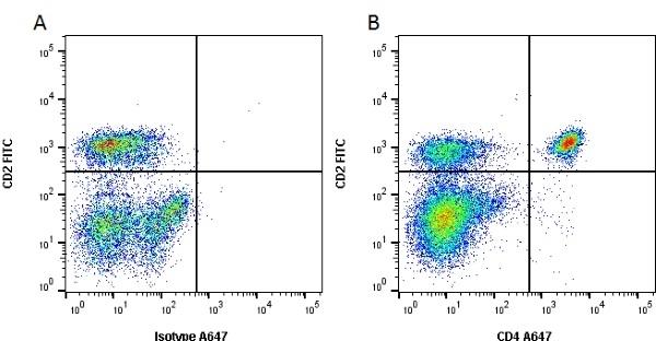CD4 Antibody | CC8 gallery image 1