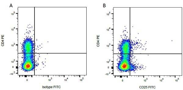 CD4 Antibody | CC8 gallery image 11