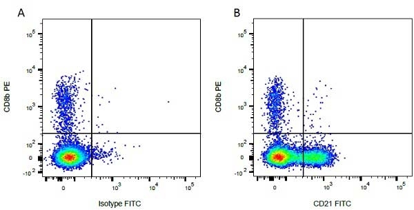 CD8 Beta Antibody | CC58 gallery image 2