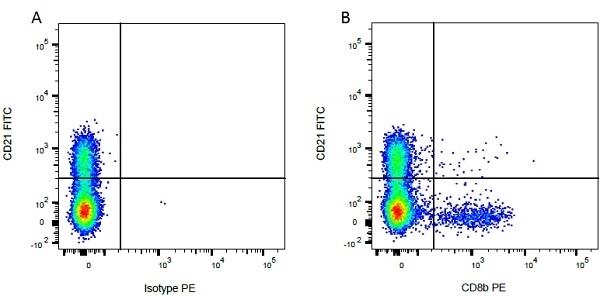 CD8 Beta Antibody | CC58 gallery image 3