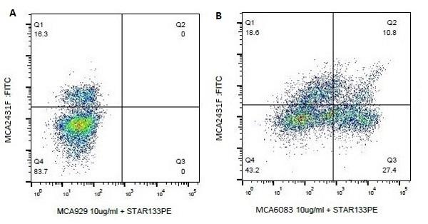 CD8a Antibody   7C2B gallery image 1