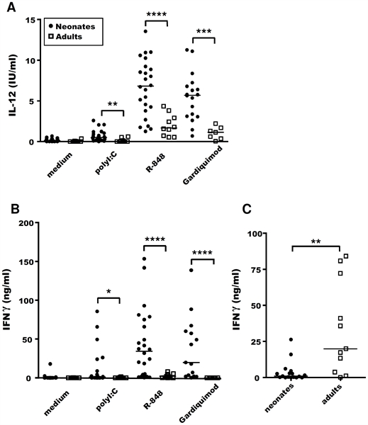 IFN Gamma Antibody | CC302 gallery image 2