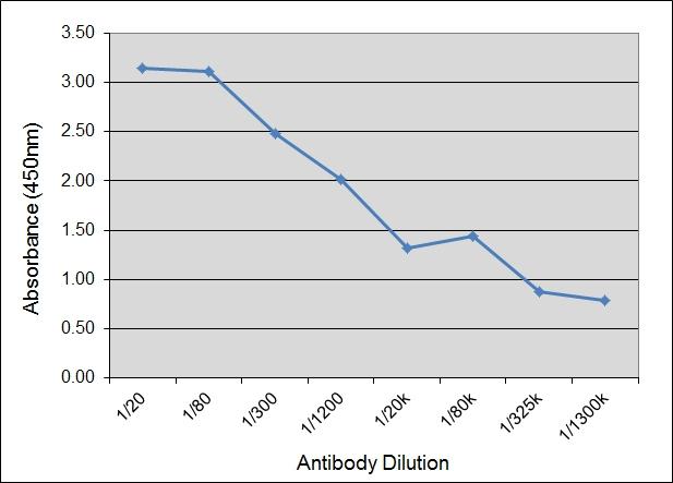 IgA Antibody | IL-A71 gallery image 1