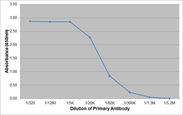 IgA Antibody | K84 2F9 gallery image 1