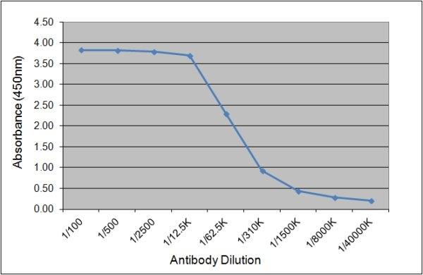 IgG1 Antibody | K37 2G6 gallery image 1
