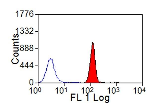 MHC Class I Monomorphic Antibody | IL-A88 gallery image 2