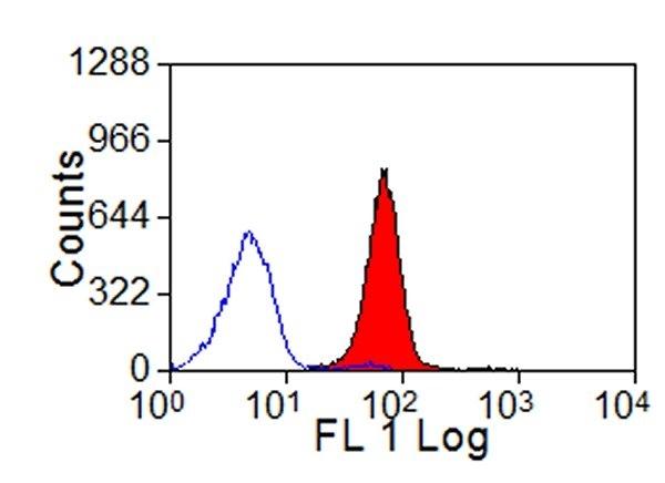 MHC Class I Monomorphic Antibody | IL-A88 gallery image 1