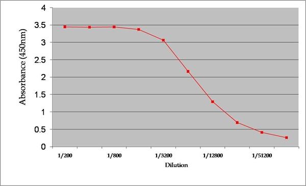 Dehydroepiandrosterone Antibody | 1-25.1 (BGN/1177/1251) gallery image 1