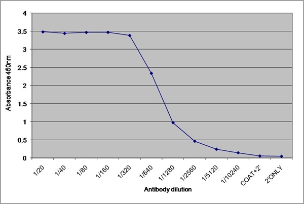 Dehydroepiandrosterone Antibody | 1-7.1 (BGN/1177/171) gallery image 1