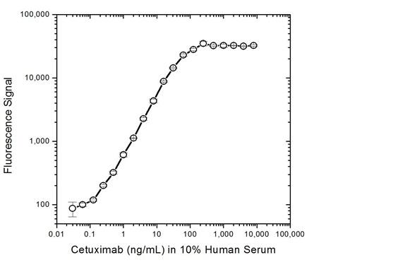 Cetuximab Antibody | AbD19376_hIgG1 gallery image 3