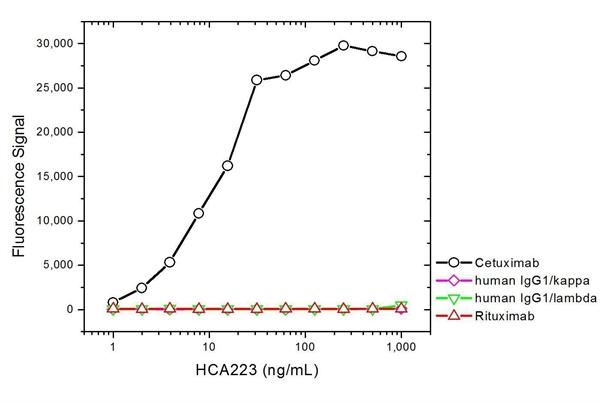 Cetuximab Antibody | AbD19815_hIgG1 gallery image 2