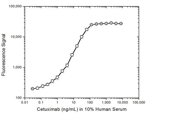 Cetuximab Antibody | AbD19830_hIgG1 gallery image 4