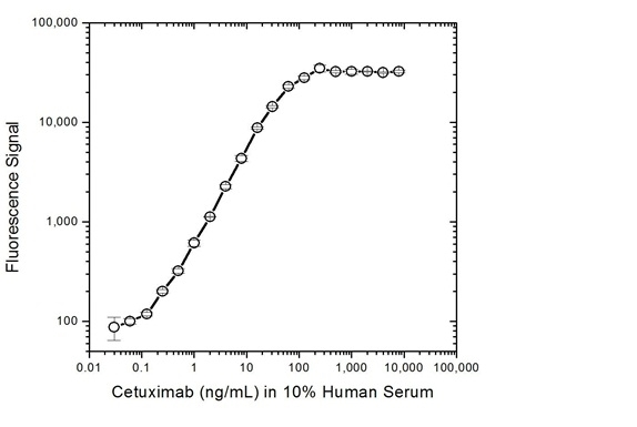 Cetuximab Antibody | AbD19834 gallery image 4
