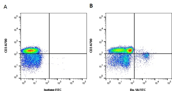 Bu-1A Antibody   L22 gallery image 3