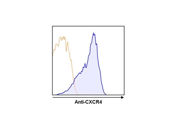 CD184 / CXCR4 Antibody | 9D9 gallery image 1
