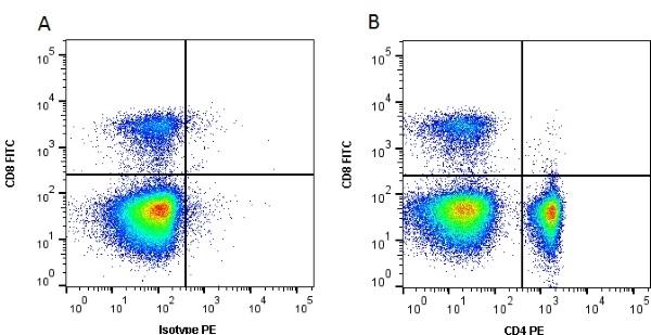 CD4 Antibody | 2-35 gallery image 2