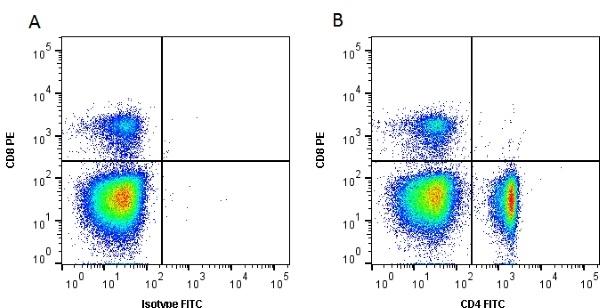CD4 Antibody | 2-35 gallery image 1