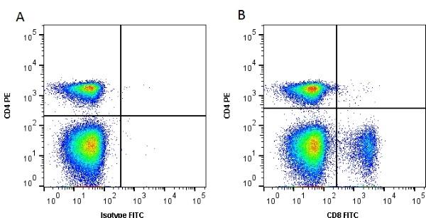 CD8 Alpha Antibody | 11-39 gallery image 1
