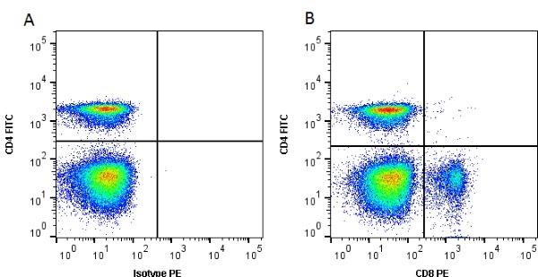 CD8 Alpha Antibody | 11-39 gallery image 2