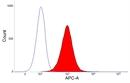 CSF1R Antibody | ROS-AV170 thumbnail image 7