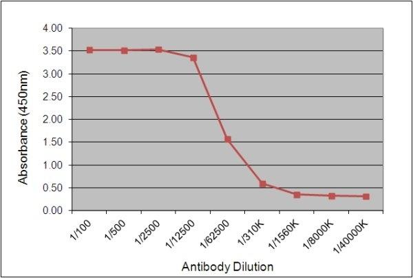 IgY Antibody | 161.2F11 gallery image 1