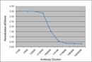 IgY Antibody | 161. 3E6 thumbnail image 1