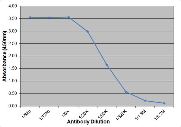 IL-6 Antibody   AV129 thumbnail image 1