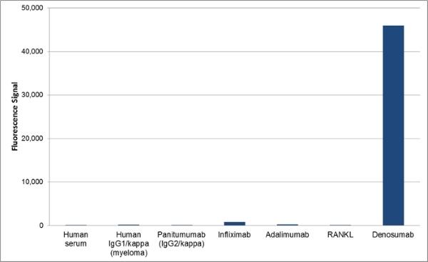 Denosumab Antibody | AbD26295_hIgG1 gallery image 1