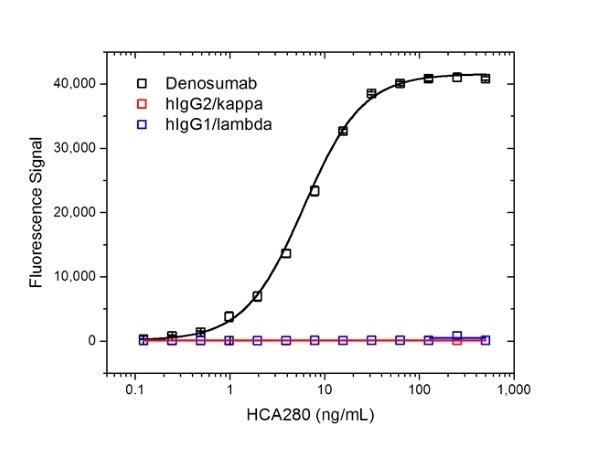 Denosumab Antibody | AbD26295_hIgG1 gallery image 2