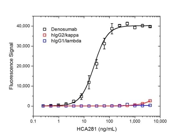 Denosumab Antibody | AbD26296_hIgG1 gallery image 2