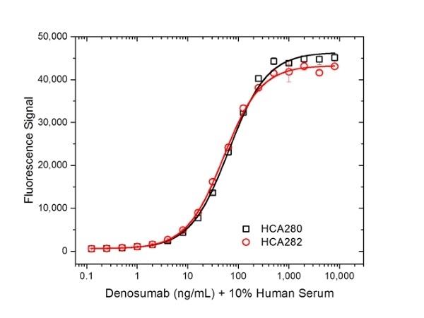 Denosumab Antibody | AbD26781_hIgG1 gallery image 4