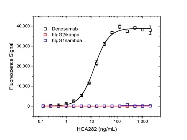 Denosumab Antibody   AbD26862_hIgG1 gallery image 2