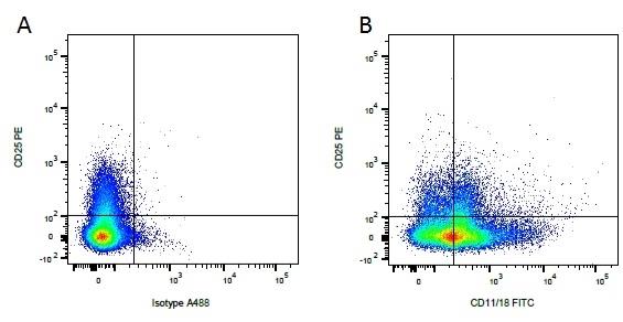 CD11/CD18 Antibody | YKIX490.6.4 gallery image 2