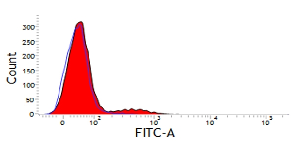CD11d Antibody | CA11.8H2 gallery image 2