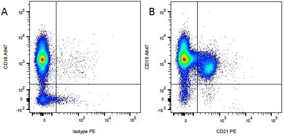 CD21 Antibody | CA2.1D6 gallery image 4