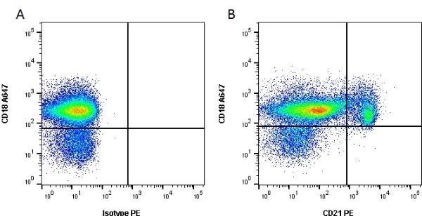 CD21 Antibody | CA2.1D6 gallery image 1