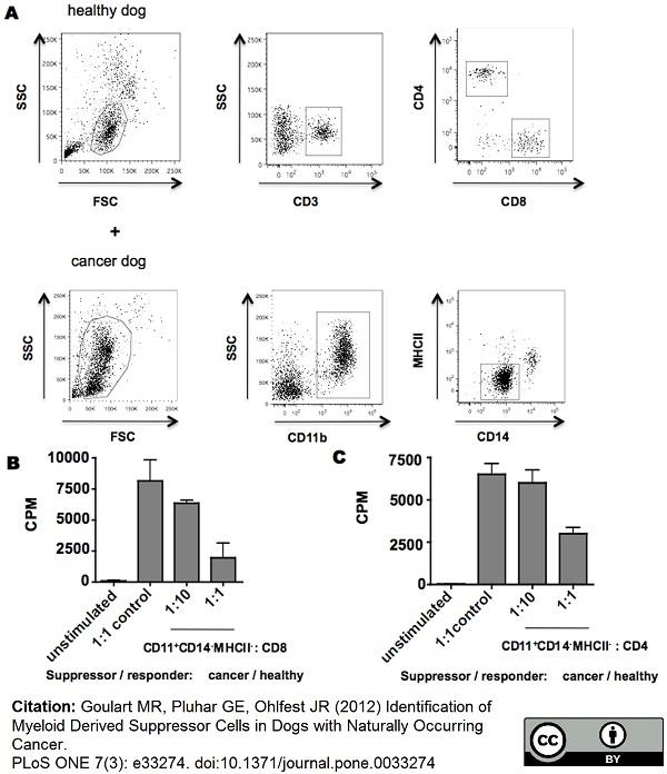 CD3 Antibody | CA17.2A12 gallery image 10