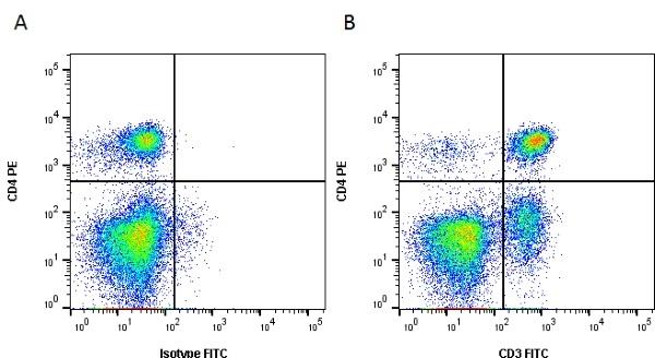 CD3 Antibody | CA17.2A12 gallery image 2
