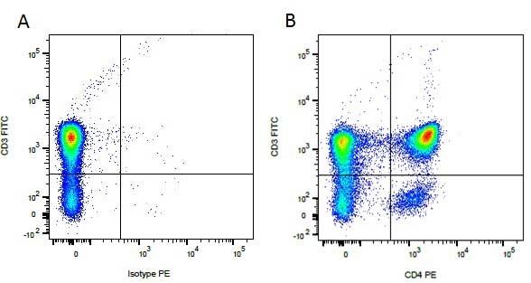 CD4 Antibody | YKIX302.9 gallery image 3