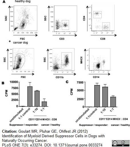 CD4 Antibody | YKIX302.9 gallery image 9