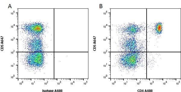 CD4 Antibody | YKIX302.9 gallery image 2