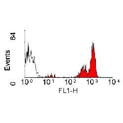 CD45 Antibody | YKIX716.13 gallery image 1