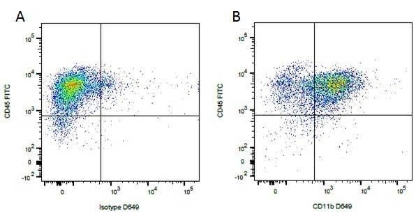CD45 Antibody | YKIX716.13 gallery image 5